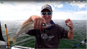 Whiting Fishing Reports